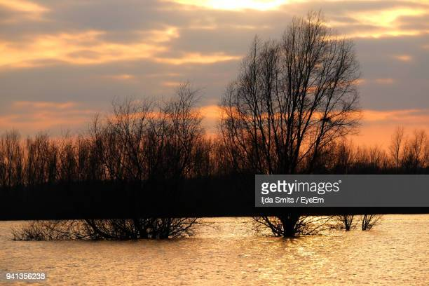 Silhouette Bare Trees On Landscape Against Sky During Sunset