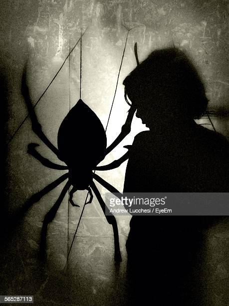 Silhouette Boy With Spider Toy