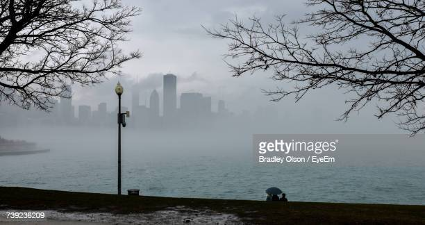 silhouette branches by lake against city during rain - bare tree stock pictures, royalty-free photos & images