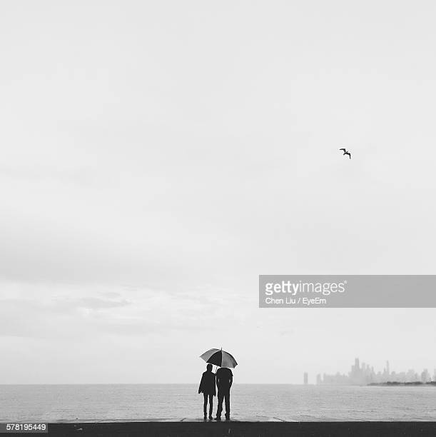 silhouette couple under umbrella at montrose harbor - one animal stock photos and pictures