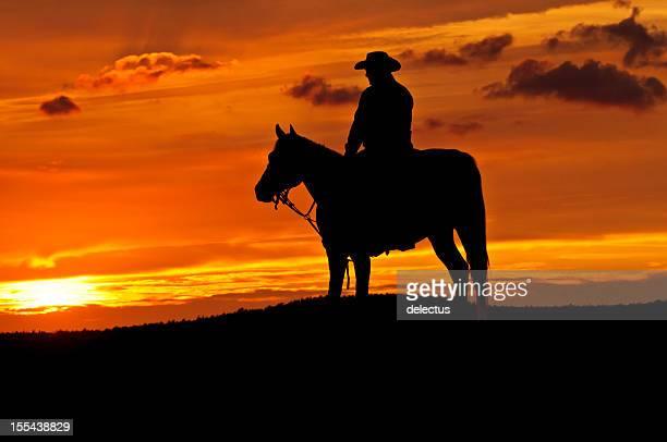 カウボーイと馬のシルエット