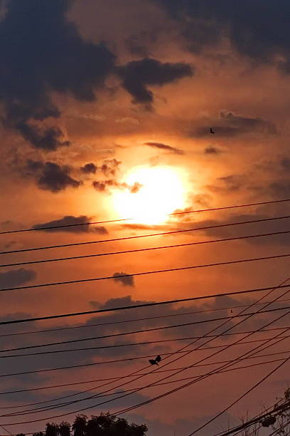 Silhouette Electricity Pylon Cables During Sunset