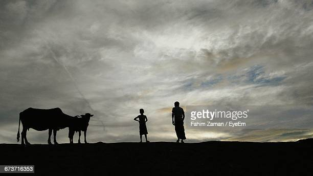 Silhouette Father And Son Standing By Cows On Field Against Cloudy Sky