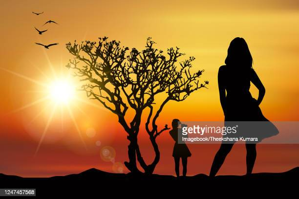 silhouette friends photographing in the sunset - imagebook stock pictures, royalty-free photos & images