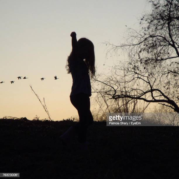 Silhouette Girl Standing On Landscape Against Clear Sky During Sunset