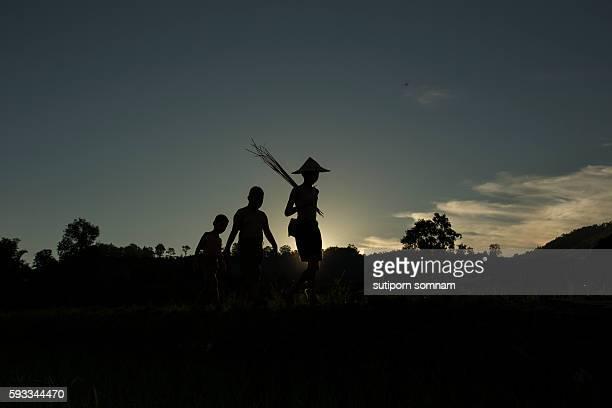 silhouette, group of  children - ラオス ストックフォトと画像