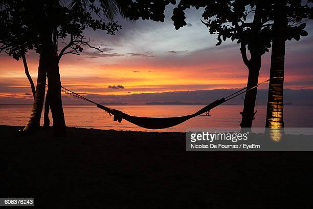 Silhouette Hammock Amidst Trees Against Sea During Sunset