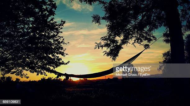 Silhouette Hammock Hanging Against Sky During Sunset
