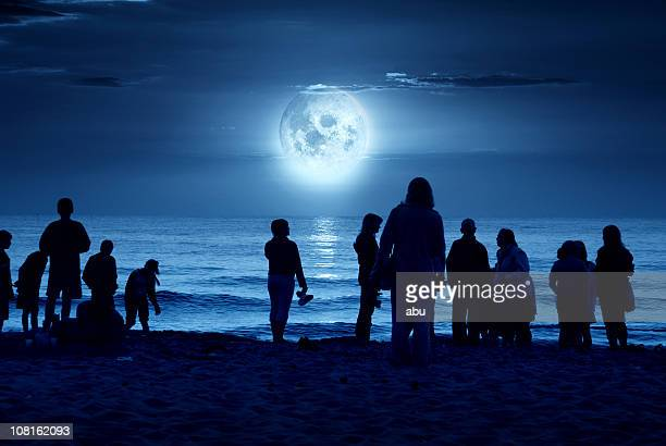Silhouette Image of People Standing on Moonlit Beach