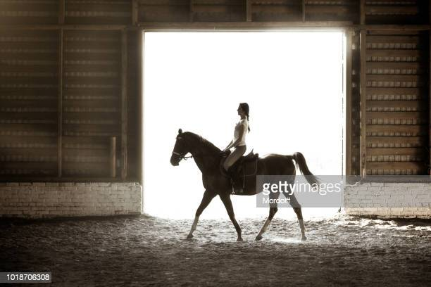 silhouette in doorway of woman riding horse - dressage horse russia stock photos and pictures