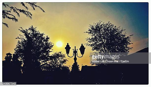 silhouette lamp post during sunset - transferbild stock-fotos und bilder