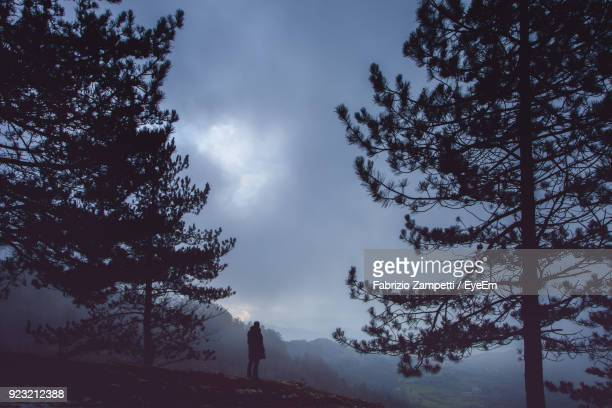 silhouette man amidst silhouette tree on mountain against cloudy sky - fabrizio zampetti foto e immagini stock