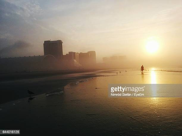 Silhouette Man And Seagulls At Beach During Sunrise