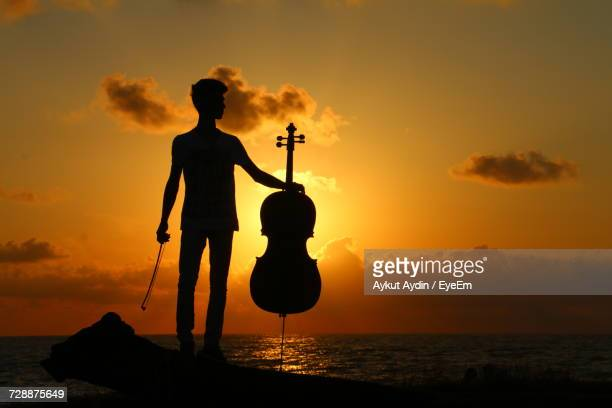 Silhouette Man Holding Violin While Standing On Wood At Beach Against Sky During Sunset
