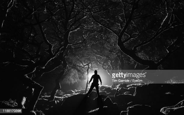 silhouette man standing by tree in forest at night - spooky stock pictures, royalty-free photos & images