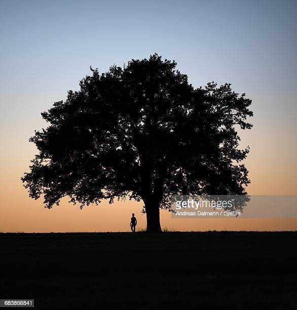 Silhouette Man Standing By Tree On Field Against Sky During Sunset
