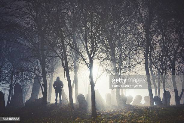 Silhouette Man Standing By Trees In Forest