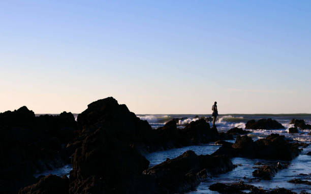 Silhouette Man Standing On Rock By Sea Against Clear Sky During Sunset