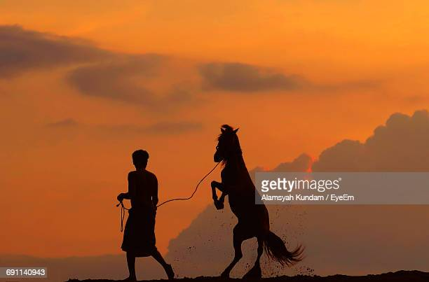 Silhouette Man Walking With Horse Rearing Up Against Orange Sky