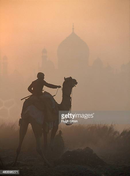 silhouette of a camel rider with taj mahal in the background - hugh sitton stock-fotos und bilder