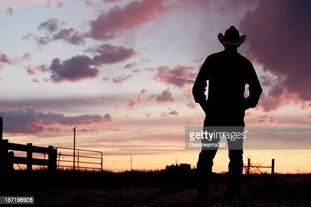 Silhouette of a cowboy at day break