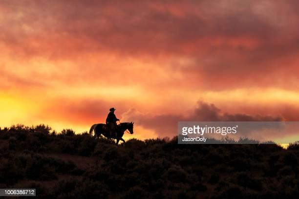 silhouet van een cowboy tijdens een schitterende zonsondergang - cowboy stockfoto's en -beelden