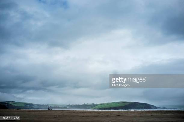 silhouette of a dog walker and dog on a sandy beach under an overcast sky. headland and coastline. - nuvoloso foto e immagini stock