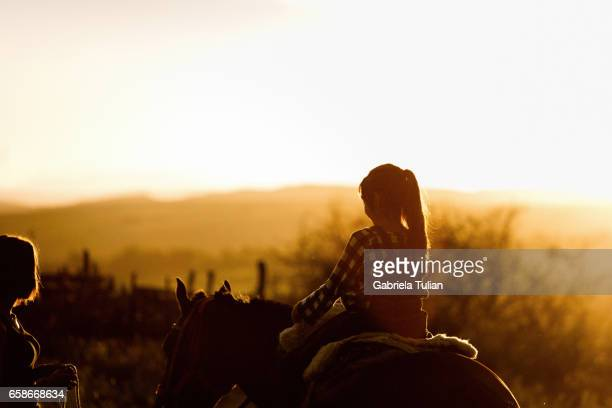 Silhouette of a girl and a horse on a background of dawn