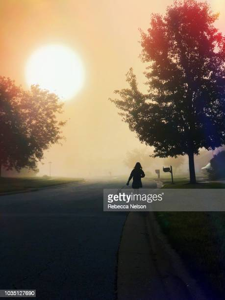 silhouette of a girl and boston terrier dog taking a walk