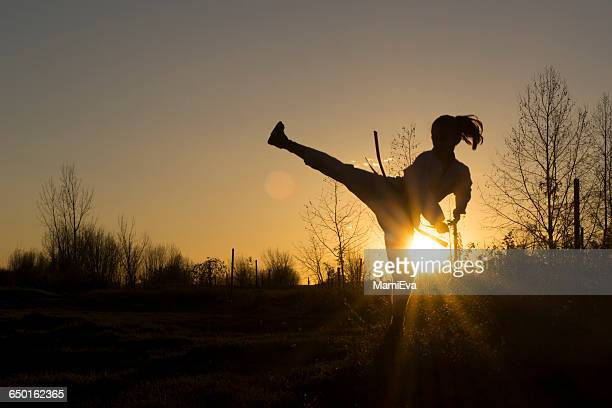 silhouette of a girl practicing taekwondo martial art - taekwondo kids stock photos and pictures