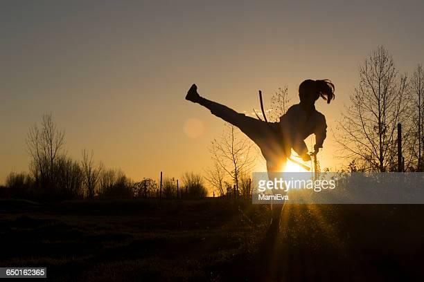 silhouette of a girl practicing taekwondo martial art - taekwondo fotografías e imágenes de stock