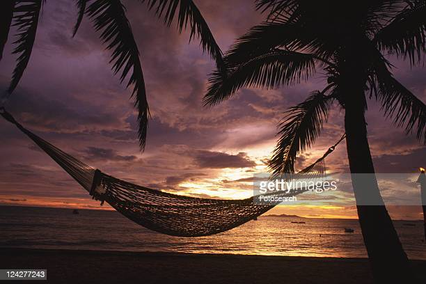 Silhouette of a Hammock and Palm Trees, Side View