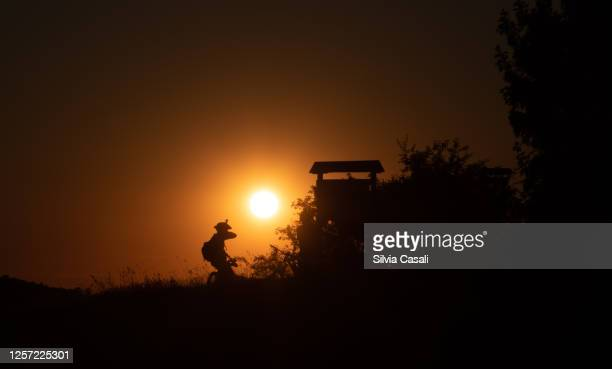 silhouette of a head and body of mountain biker against a sunset on the foreground - silvia casali stock pictures, royalty-free photos & images