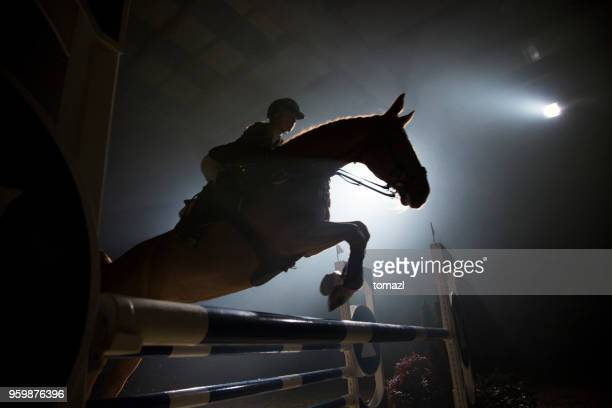 silhouette of a horse and a rider jumping over hurdle - riding hat stock pictures, royalty-free photos & images