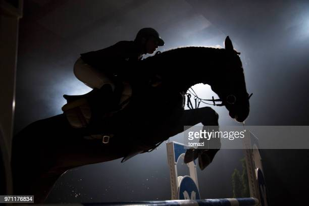silhouette of a horse and a rider jumping over hurdle - equestrian show jumping stock pictures, royalty-free photos & images