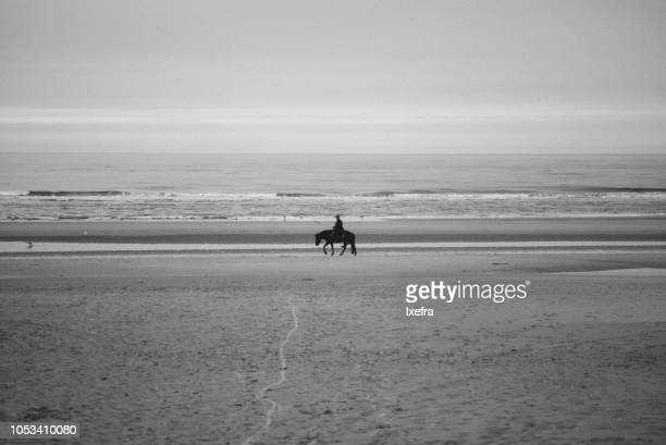 Silhouette of a horse rider on a beach.