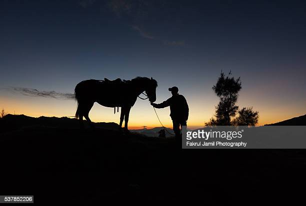 Silhouette of a Horseman in Mount Bromo