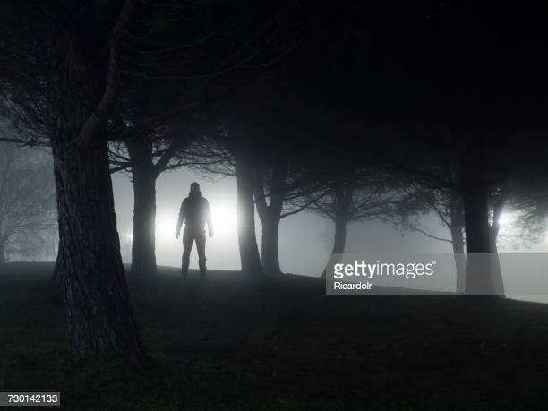 silhouette of a man standing in park at night - threats stock pictures, royalty-free photos & images