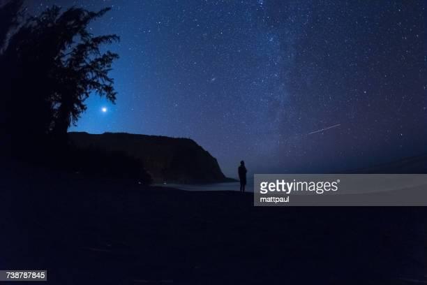 Silhouette of a Man standing on beach at night, Waipio Valley, Kukuihaele, Hamakua, Hawaii, America, USA
