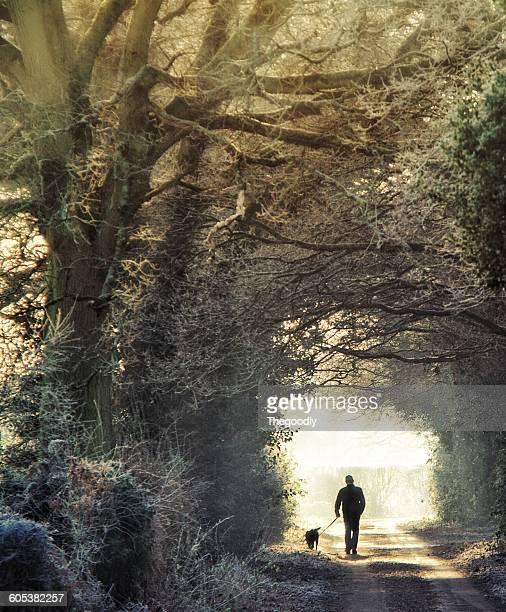 Silhouette of a Man walking dog in winter