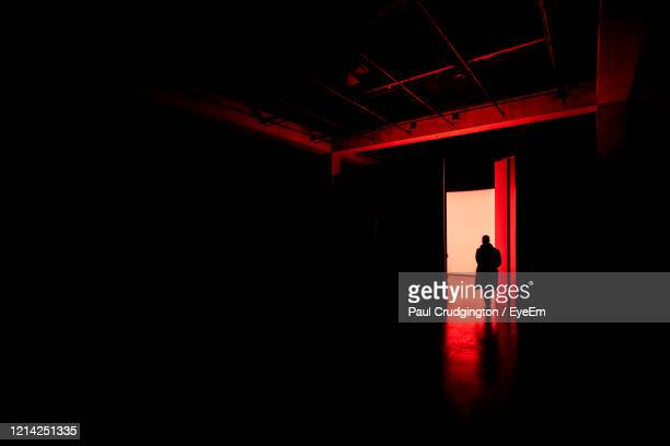 silhouette of a man walking in to a building - art gallery stock pictures, royalty-free photos & images