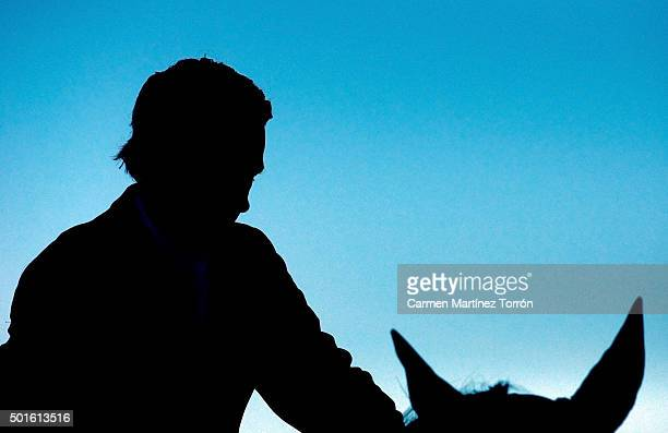 Silhouette of a man with a horse
