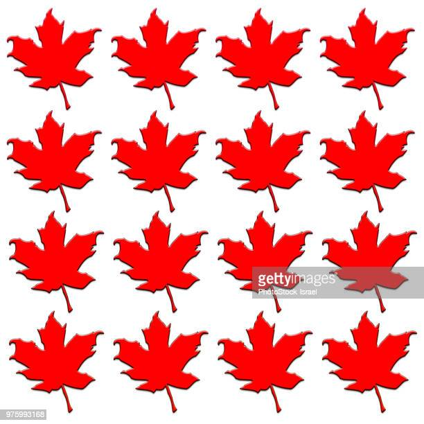 silhouette of a maple leaf