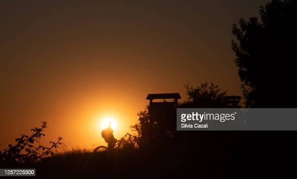 silhouette of a mountain biker against a sunset on the foreground - silvia casali stock pictures, royalty-free photos & images