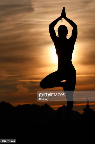 Silhouette of a woman practicing yoga against the light of the evening sun Vrksasana tree pose French Alps France