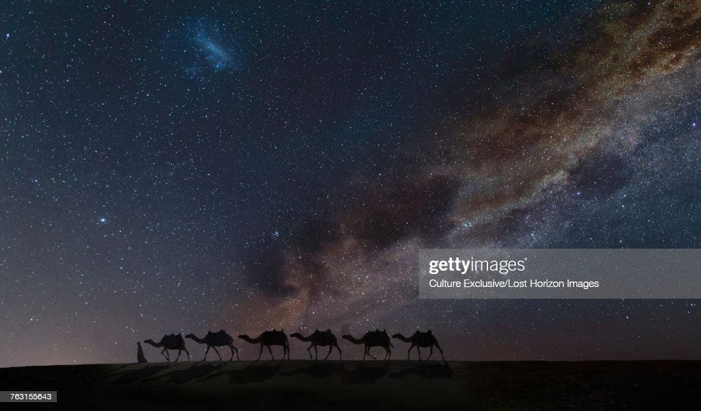 Silhouette Of Arab Man Leading Camel Train Under Starry Night Sky