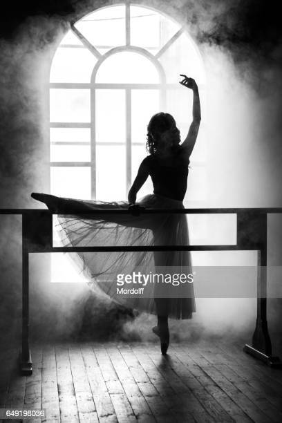 Silhouette Of Ballerina Next To Choreographic Machine