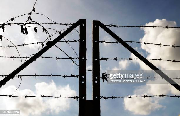 Silhouette of barbed wire fence