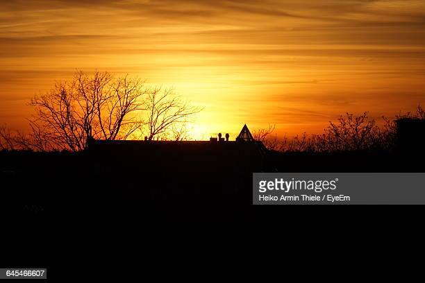silhouette of bare tree against sky - köpenick stock pictures, royalty-free photos & images