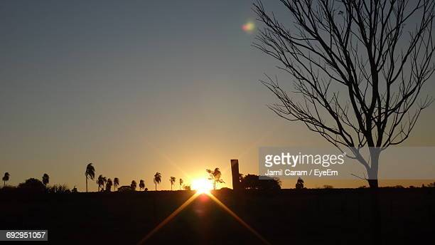 Silhouette Of Bare Trees Against Sky During Sunset